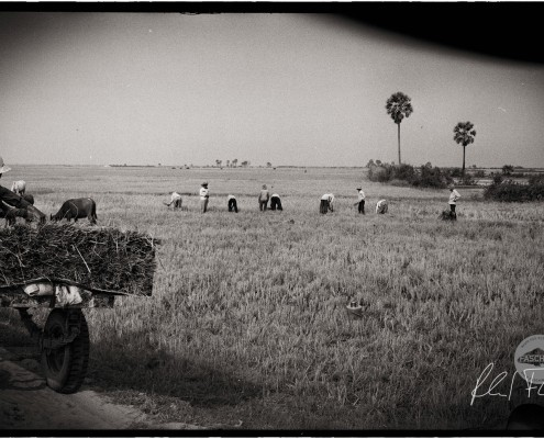 Cambodia, countryside, analog photography with Leica Camera built 57, on Ilford XP, ©2013 Reinhard Fasching