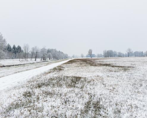 Minimalist Landscape, Winter, Lustenau, Vorarlberg