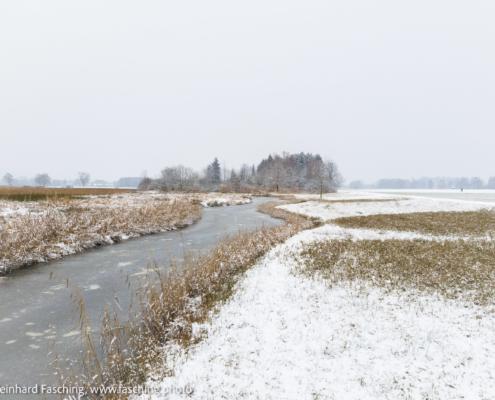 Reduzierte Winterlandschaft, Lustenau, Jan 2021 Fotografie Reinhard Fasching